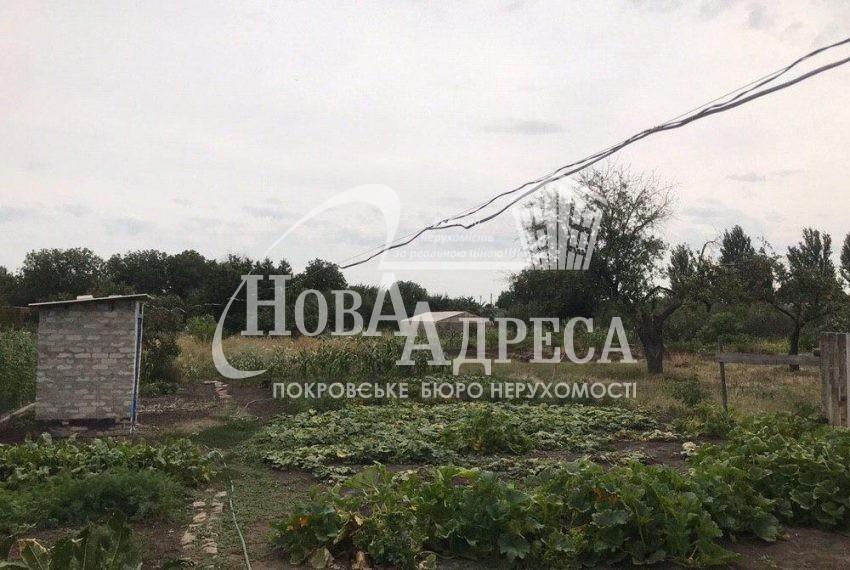 photo_2020-08-26_15-14-20